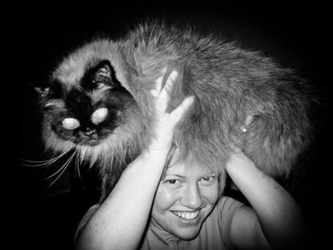 "Tasty News: ""Cat Fro"" Meme-ing the Nation"