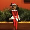 Fine Vines: Elf on a Shelf with Ryan Singer