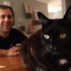 Video Licks: Watch 'Before vs. After Getting a Cat' ft. Jake Weisman